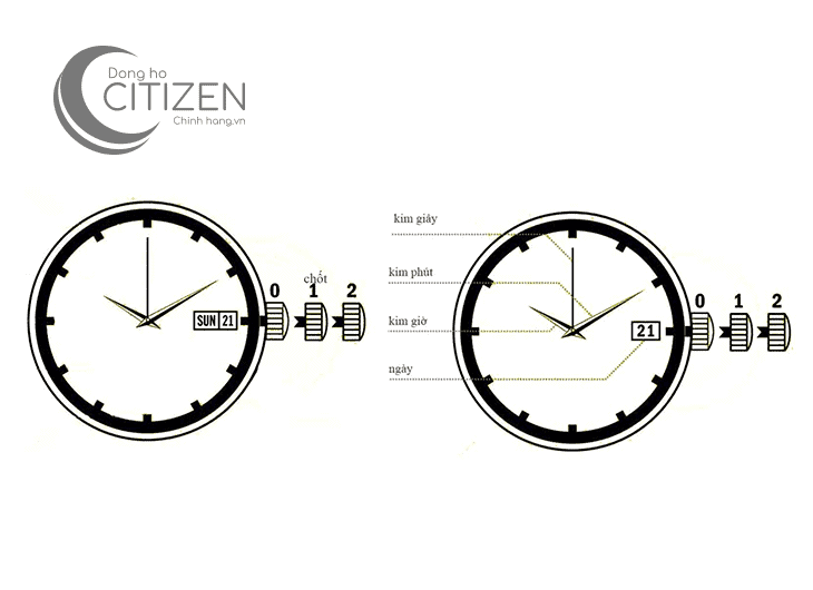 cách chỉnh đồng hồ Citizen Eco-drive cần biết